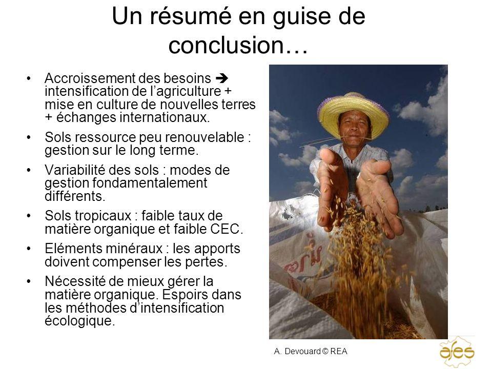 Un résumé en guise de conclusion… Accroissement des besoins intensification de lagriculture + mise en culture de nouvelles terres + échanges internati