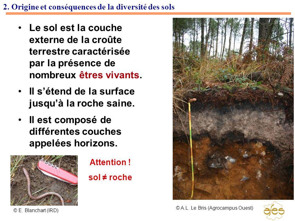 2. Origine et conséquences de la diversité des sols Le sol est la couche externe de la croûte terrestre caractérisée par la présence de nombreux êtres
