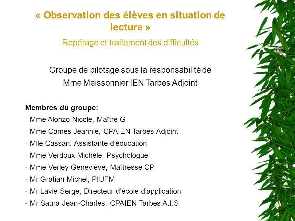 « Observation des élèves en situation de lecture » Repérage et traitement des difficultés Groupe de pilotage sous la responsabilité de Mme Meissonnier