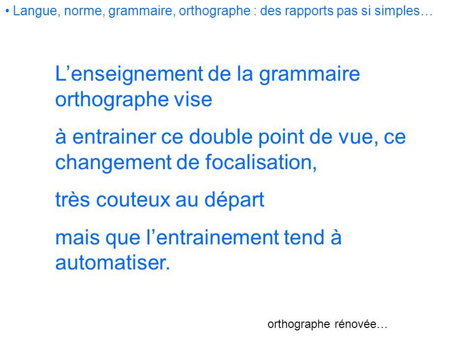 Lenseignement de la grammaire orthographe vise à entrainer ce double point de vue, ce changement de focalisation, très couteux au départ mais que lent