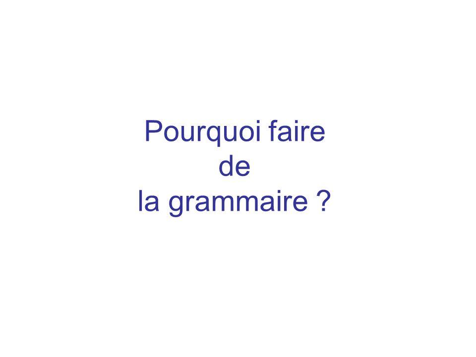 Pourquoi faire de la grammaire ?
