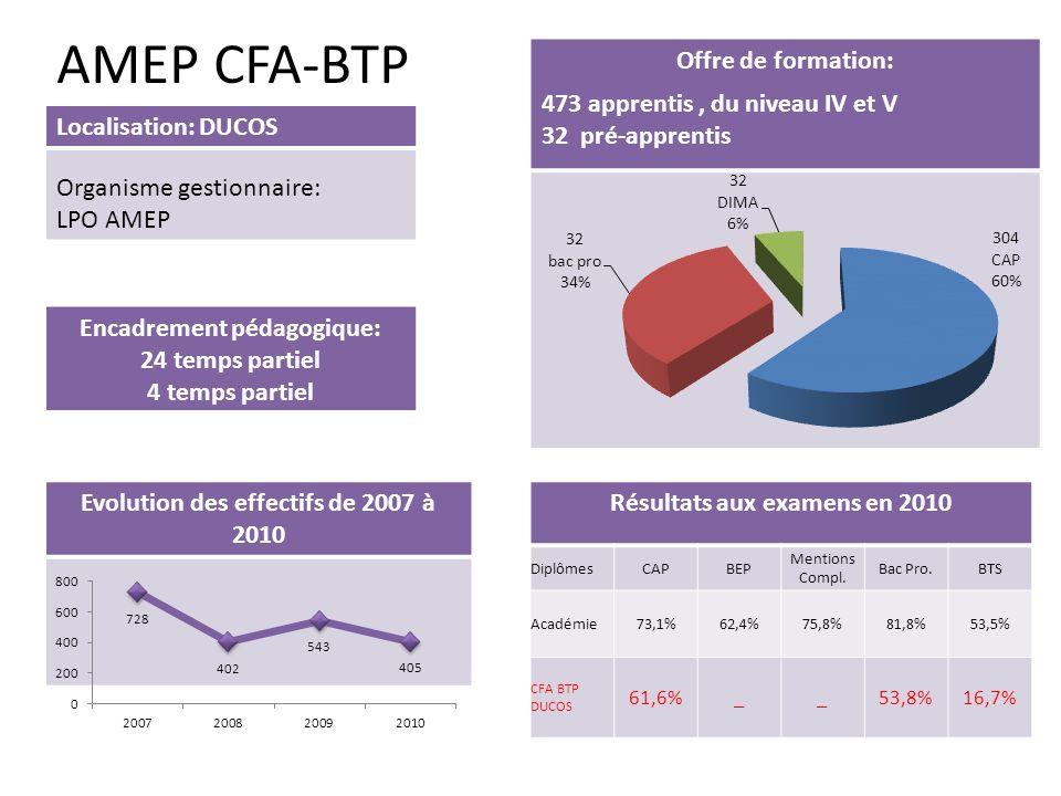 AMEP CFA-BTP Encadrement pédagogique: 24 temps partiel 4 temps partiel Localisation: DUCOS Organisme gestionnaire: LPO AMEP Offre de formation: 473 ap