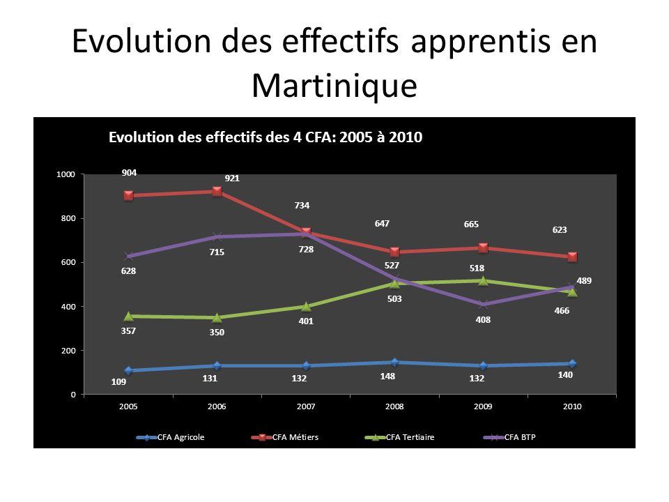Profil de lapprenti martiniquais: Un garçon, âgé entre 19 et 25 ans, qui suit une formation de niveau IV dans le secteur de la production