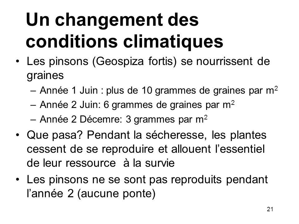 Un changement des conditions climatiques Les pinsons (Geospiza fortis) se nourrissent de graines –Année 1 Juin : plus de 10 grammes de graines par m 2