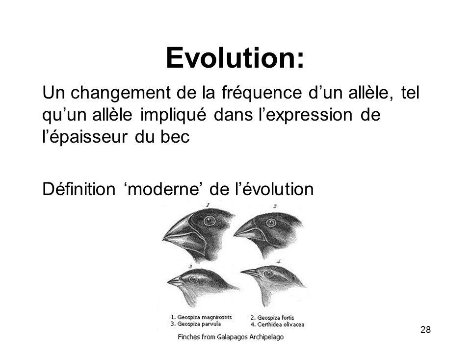 Evolution: Un changement de la fréquence dun allèle, tel quun allèle impliqué dans lexpression de lépaisseur du bec Définition moderne de lévolution 2