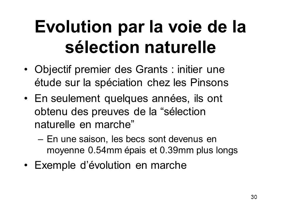 Evolution par la voie de la sélection naturelle Objectif premier des Grants : initier une étude sur la spéciation chez les Pinsons En seulement quelqu