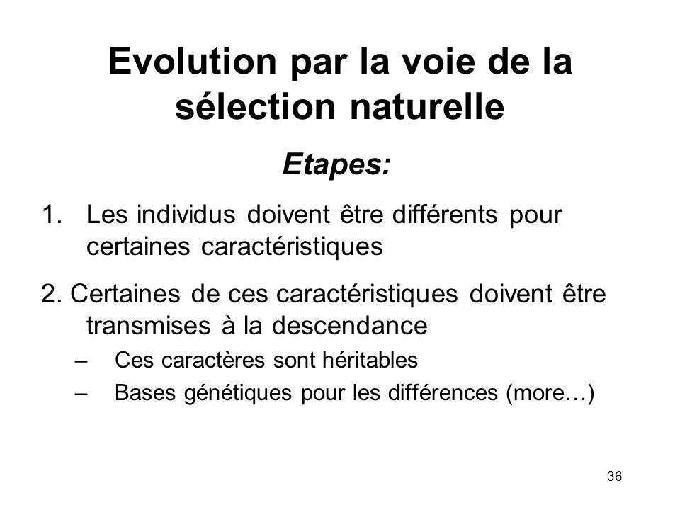 Evolution par la voie de la sélection naturelle Etapes: 1.Les individus doivent être différents pour certaines caractéristiques 2. Certaines de ces ca