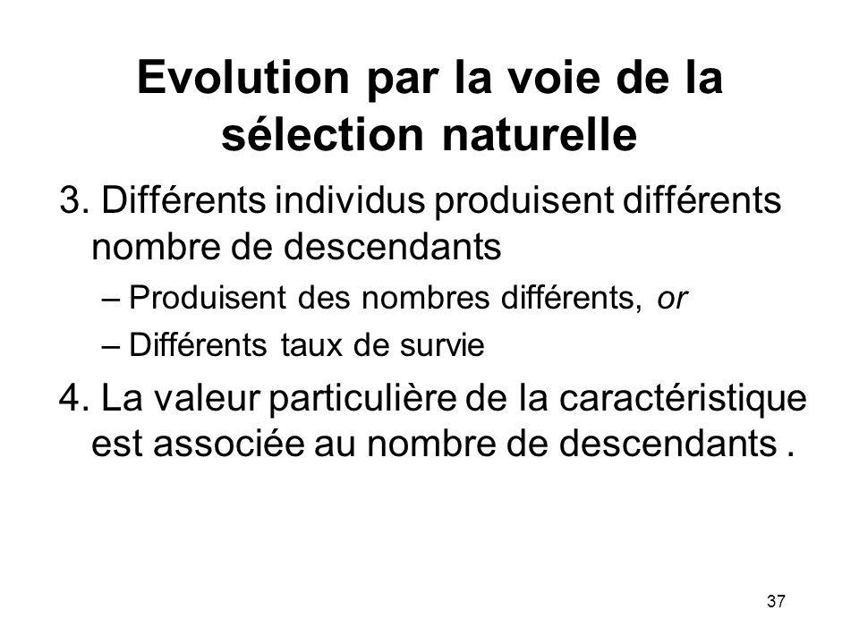 3. Différents individus produisent différents nombre de descendants –Produisent des nombres différents, or –Différents taux de survie 4. La valeur par