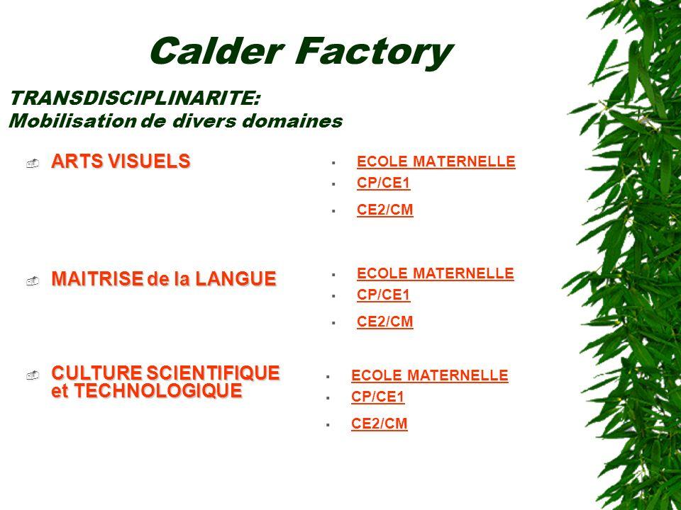 ARTS VISUELS ARTS VISUELS ECOLE MATERNELLE CP/CE1 CE2/CM Calder Factory TRANSDISCIPLINARITE: Mobilisation de divers domaines MAITRISE de la LANGUE MAI