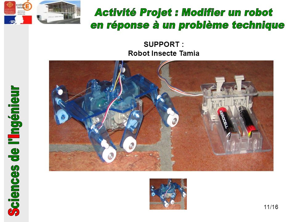 SUPPORT : Robot Insecte Tamia 11/16