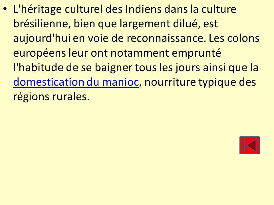 L'héritage culturel des Indiens dans la culture brésilienne, bien que largement dilué, est aujourd'hui en voie de reconnaissance. Les colons européens