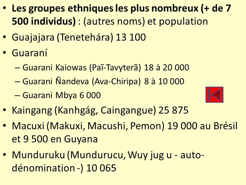Les groupes ethniques les plus nombreux (+ de 7 500 individus) : (autres noms) et population Guajajara (Tenetehára) 13 100 Guaraní – Guarani Kaiowas (
