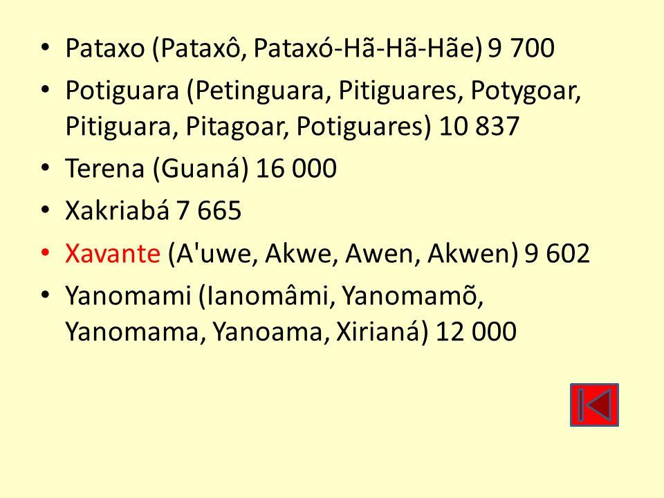 Pataxo (Pataxô, Pataxó-Hã-Hã-Hãe) 9 700 Potiguara (Petinguara, Pitiguares, Potygoar, Pitiguara, Pitagoar, Potiguares) 10 837 Terena (Guaná) 16 000 Xak