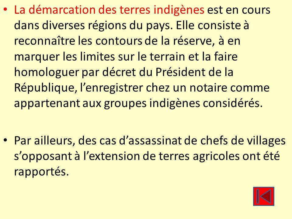 La démarcation des terres indigènes est en cours dans diverses régions du pays. Elle consiste à reconnaître les contours de la réserve, à en marquer l