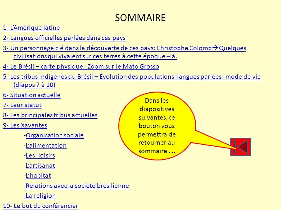 SOMMAIRE 1- LAmérique latine 2- Langues officielles parlées dans ces pays 3- Un personnage clé dans la découverte de ces pays: Christophe Colomb Quelq