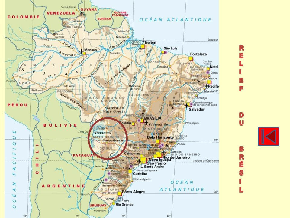 Pataxo (Pataxô, Pataxó-Hã-Hã-Hãe) 9 700 Potiguara (Petinguara, Pitiguares, Potygoar, Pitiguara, Pitagoar, Potiguares) 10 837 Terena (Guaná) 16 000 Xakriabá 7 665 Xavante (A uwe, Akwe, Awen, Akwen) 9 602 Yanomami (Ianomâmi, Yanomamõ, Yanomama, Yanoama, Xirianá) 12 000