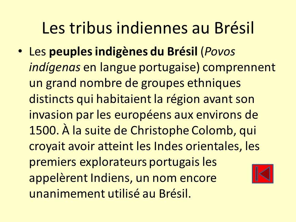 Les peuples indigènes au Brésil étaient surtout des tribus semi-nomades dont l économie se basait sur la chasse, la pêche, la cueillette et lagriculture de subsistance.
