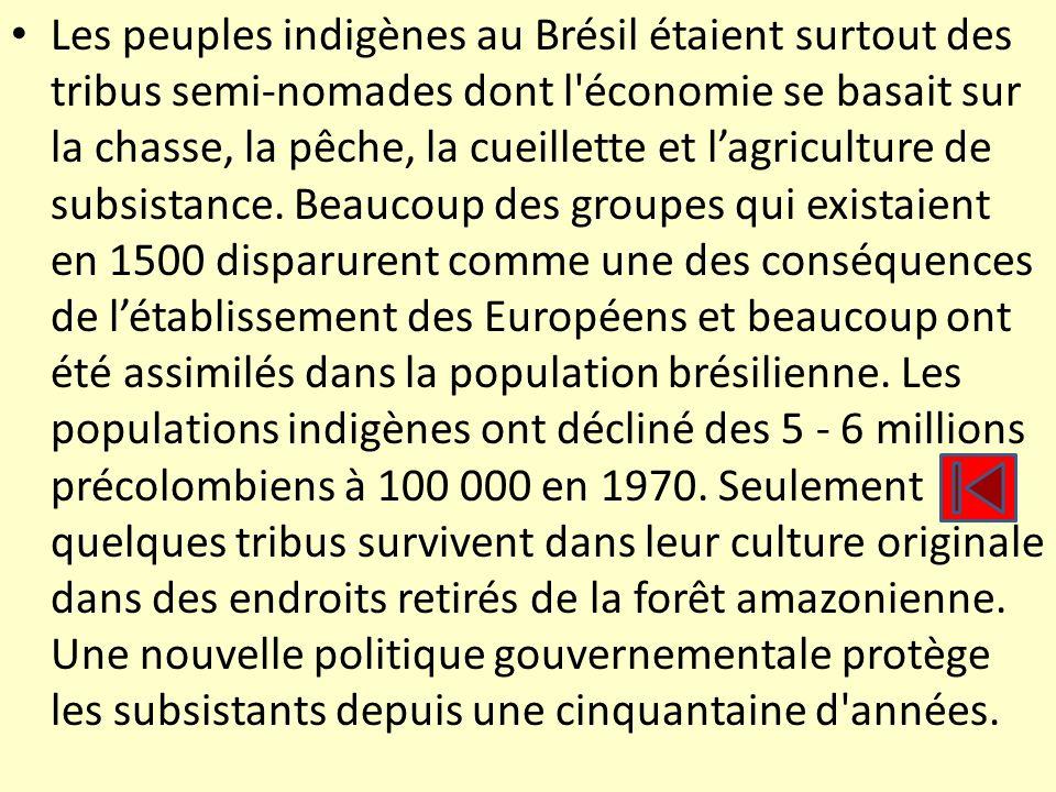 Les peuples indigènes au Brésil étaient surtout des tribus semi-nomades dont l'économie se basait sur la chasse, la pêche, la cueillette et lagricultu