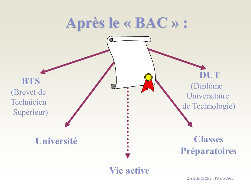 Après le « BAC » : BTS (Brevet de Technicien Supérieur) DUT (Diplôme Universitaire de Technologie) Université Vie active Classes Préparatoires Lycée d