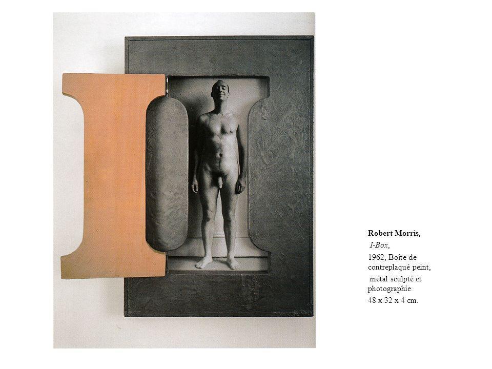 Robert Morris, I-Box, 1962, Boîte de contreplaqué peint, métal sculpté et photographie 48 x 32 x 4 cm.