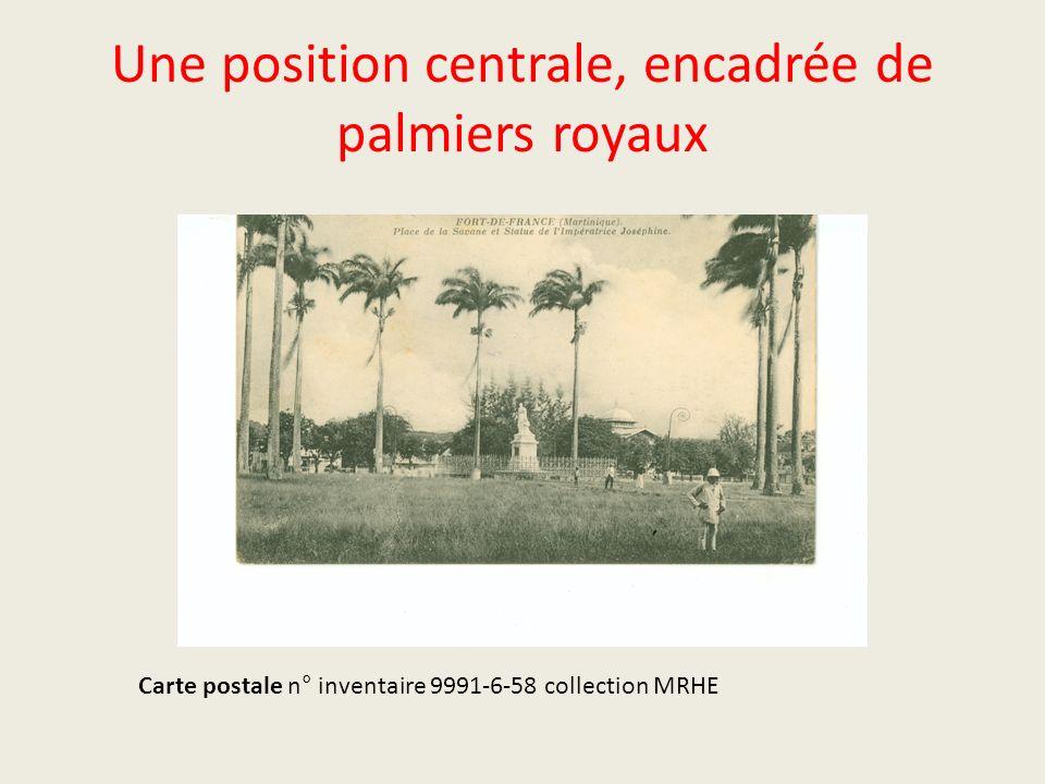 Une position centrale, encadrée de palmiers royaux Carte postale n° inventaire 9991-6-58 collection MRHE
