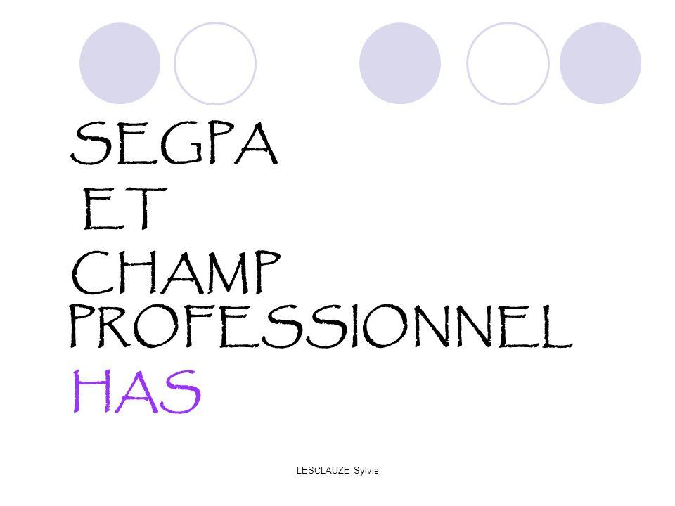 LESCLAUZE Sylvie SEGPA ET CHAMP PROFESSIONNEL HAS