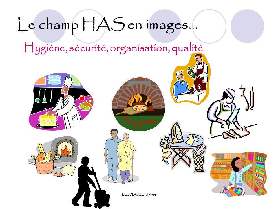LESCLAUZE Sylvie Le champ HAS en images... Hygiène, sécurité, organisation, qualité