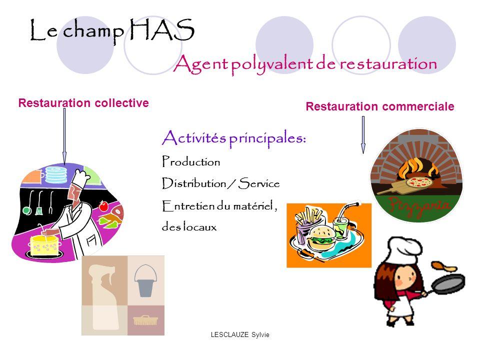 Le champ HAS Agent polyvalent de restauration Activités principales: Production Distribution / Service Entretien du matériel, des locaux Restauration collective Restauration commerciale