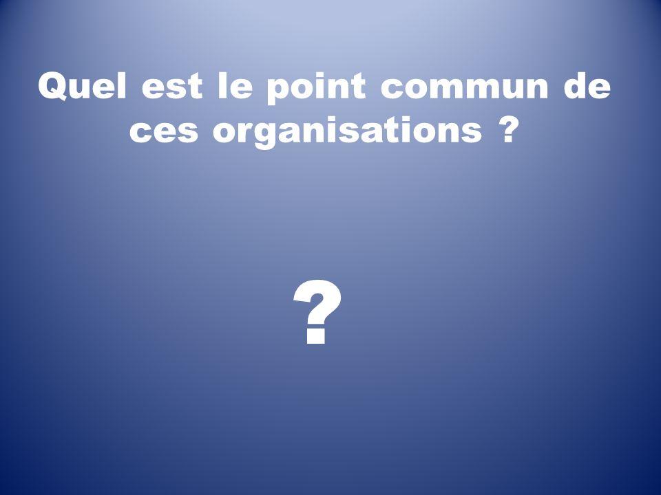 Quel est le point commun de ces organisations ? ?