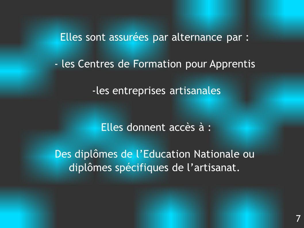 Elles sont assurées par alternance par : - les Centres de Formation pour Apprentis -les entreprises artisanales Elles donnent accès à : Des diplômes d
