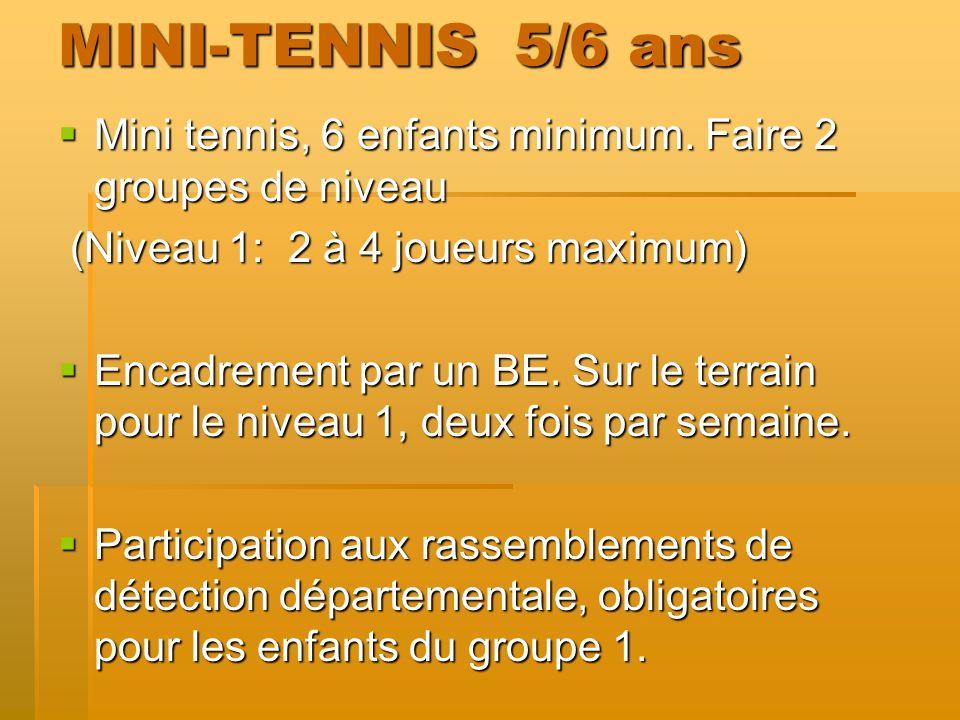 MINI-TENNIS 5/6 ans Mini tennis, 6 enfants minimum. Faire 2 groupes de niveau Mini tennis, 6 enfants minimum. Faire 2 groupes de niveau (Niveau 1: 2 à