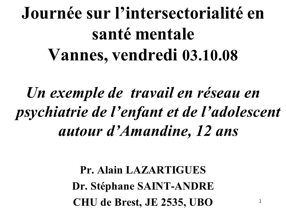 1 Journée sur lintersectorialité en santé mentale Vannes, vendredi 03.10.08 Un exemple de travail en réseau en psychiatrie de lenfant et de ladolescen