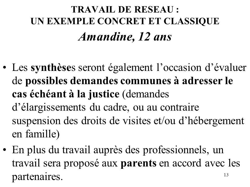 13 TRAVAIL DE RESEAU : UN EXEMPLE CONCRET ET CLASSIQUE Amandine, 12 ans Les synthèses seront également loccasion dévaluer de possibles demandes commun