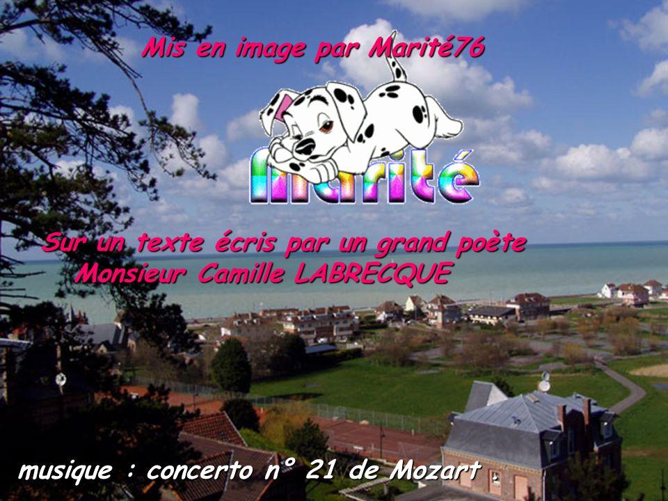 Mis en image par Marité76 Sur un texte écris par un grand poète Monsieur Camille LABRECQUE Monsieur Camille LABRECQUE musique : concerto n° 21 de Mozart.