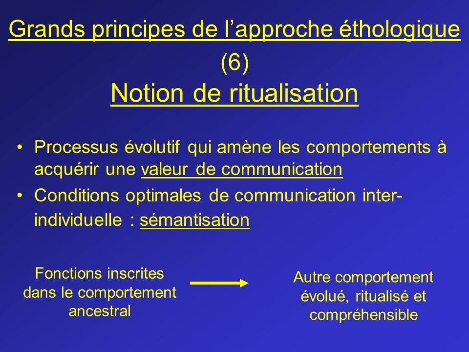 Grands principes de lapproche éthologique (6) Notion de ritualisation Processus évolutif qui amène les comportements à acquérir une valeur de communic