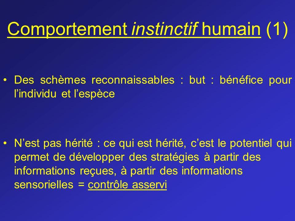 Comportement instinctif humain (1) Des schèmes reconnaissables : but : bénéfice pour lindividu et lespèce Nest pas hérité : ce qui est hérité, cest le