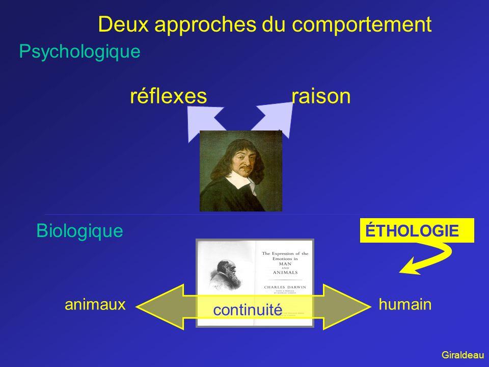 Deux approches du comportement réflexesraison Psychologique Biologique continuité animauxhumain ÉTHOLOGIE Giraldeau