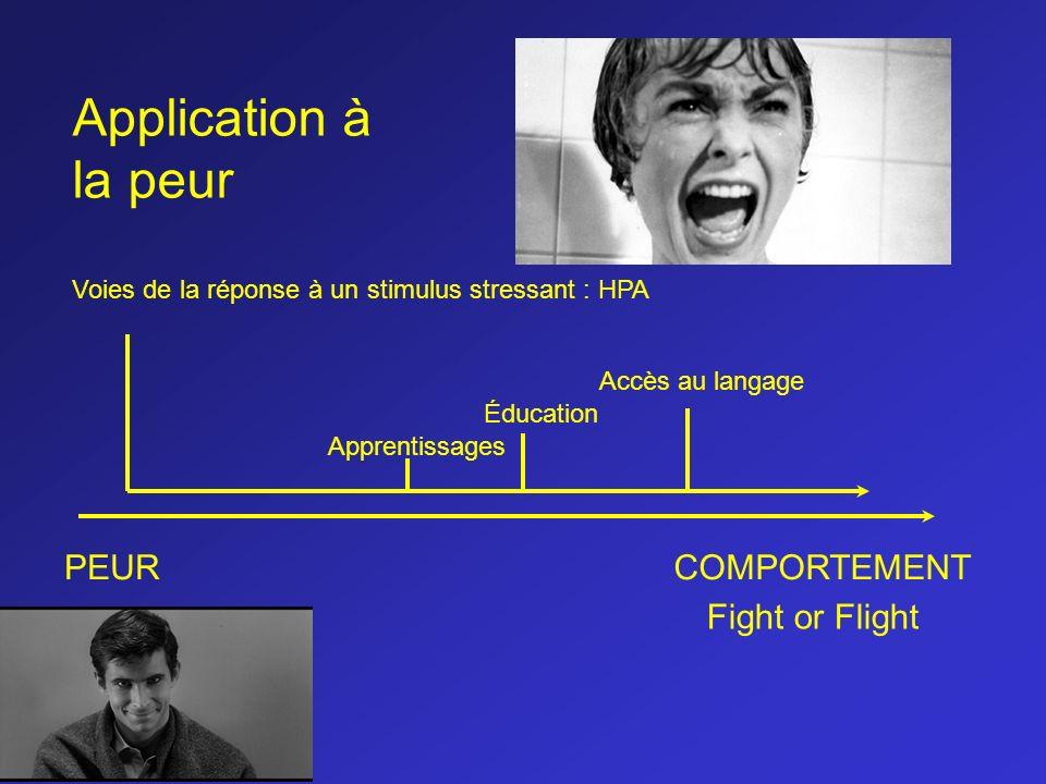 PEURCOMPORTEMENT Voies de la réponse à un stimulus stressant : HPA Éducation Accès au langage Apprentissages Fight or Flight Application à la peur