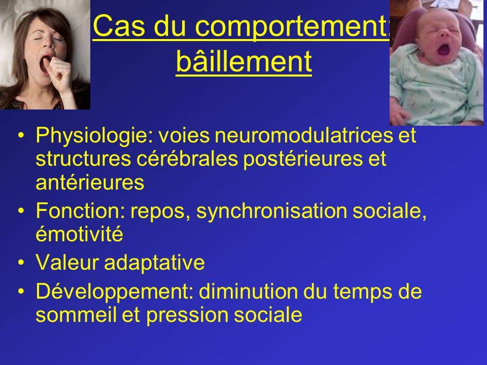 Cas du comportement: bâillement Physiologie: voies neuromodulatrices et structures cérébrales postérieures et antérieures Fonction: repos, synchronisa