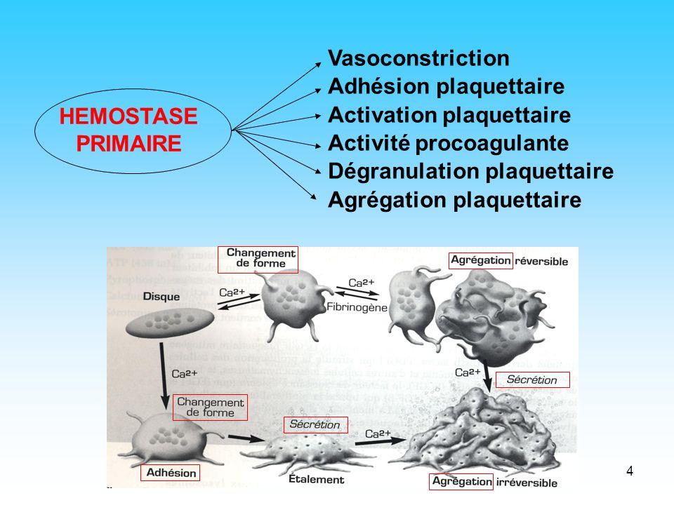 4 Vasoconstriction Adhésion plaquettaire Activation plaquettaire Activité procoagulante Dégranulation plaquettaire Agrégation plaquettaire HEMOSTASE P