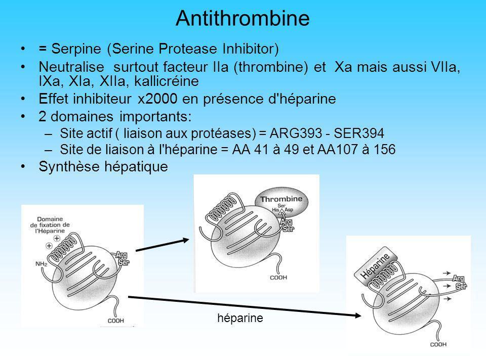 6 Système des protéines C et S Une enzyme (sérine protéase) : Protéine C Un cofacteur: Protéine S 2 récepteurs membranaires: Thrombomoduline et EPCR (Endothelial Protein C Receptor) Le complexe PC-PS inhibe les FVa et FVIIIa par protéolyse PC et PS = glycoprotéines plasmatiques synthétisées par le foie en présence de vitamine K Protéine S = liée à 60% à la C4bBP, les 40% restant libres sont actifs