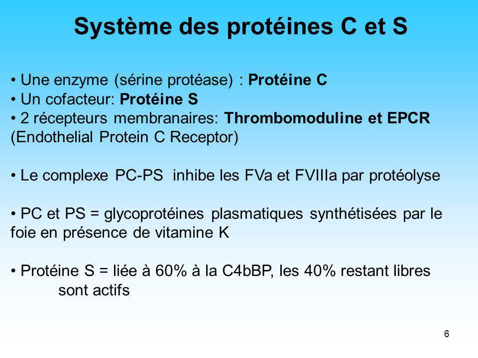 7 Protéine C Protéine S peptide signal pro- peptide domaine Gla segment aromatique boucle sensible à la thrombine EGF1 EGF2EGF3 EGF4 EGF1 EGF2 domaine SHBG (Sex Hormone Binding Globulin-like Domain ) H2NH2N H2NH2N domaine sérine protéase COOH EGF= Epidermal Growth Factor