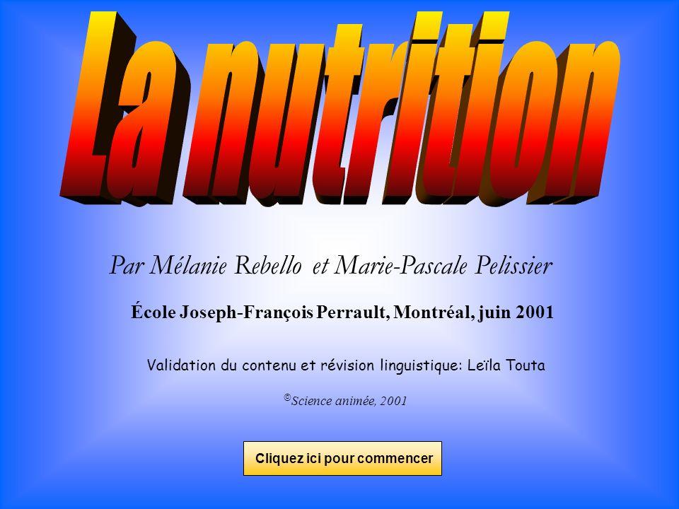 Par Mélanie Rebello et Marie-Pascale Pelissier École Joseph-François Perrault, Montréal, juin 2001 Validation du contenu et révision linguistique: Leï