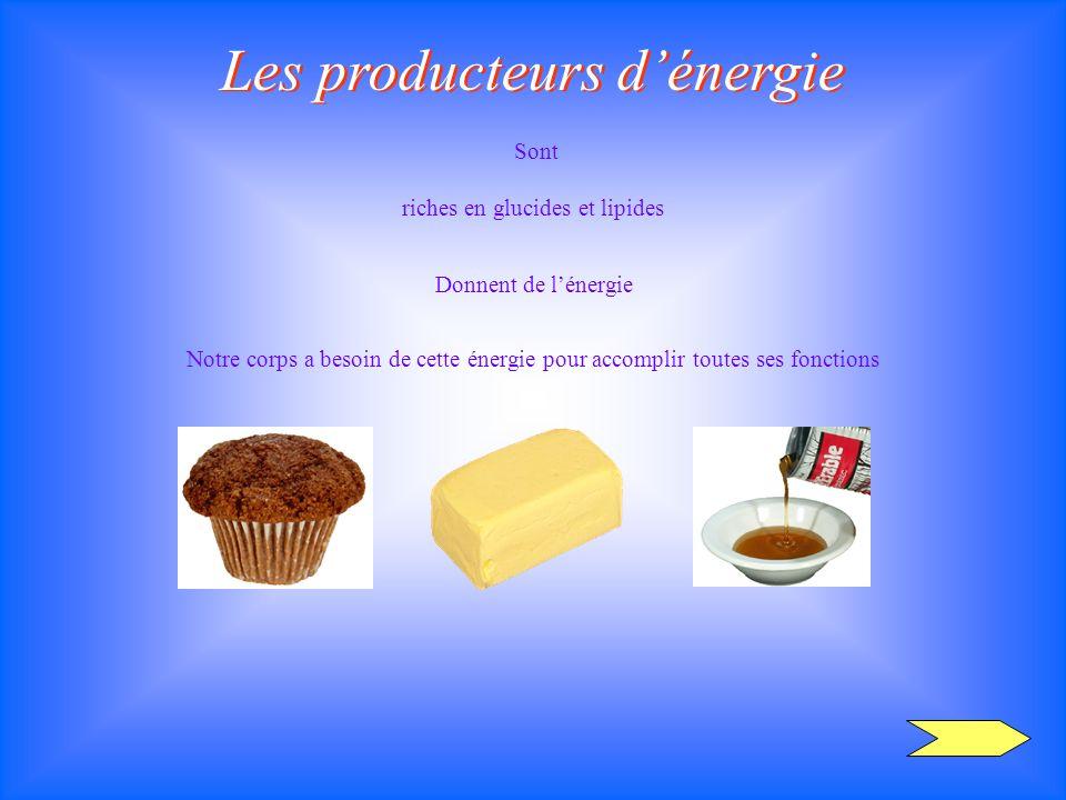 Les producteurs dénergie riches en glucides et lipides Sont Donnent de lénergie Notre corps a besoin de cette énergie pour accomplir toutes ses foncti