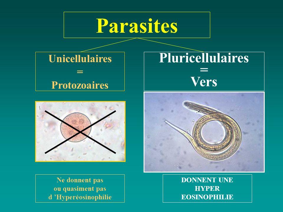 Parasites Unicellulaires = Protozoaires Pluricellulaires = Vers Ne donnent pas ou quasiment pas d Hyperéosinophilie DONNENT UNE HYPER EOSINOPHILIE