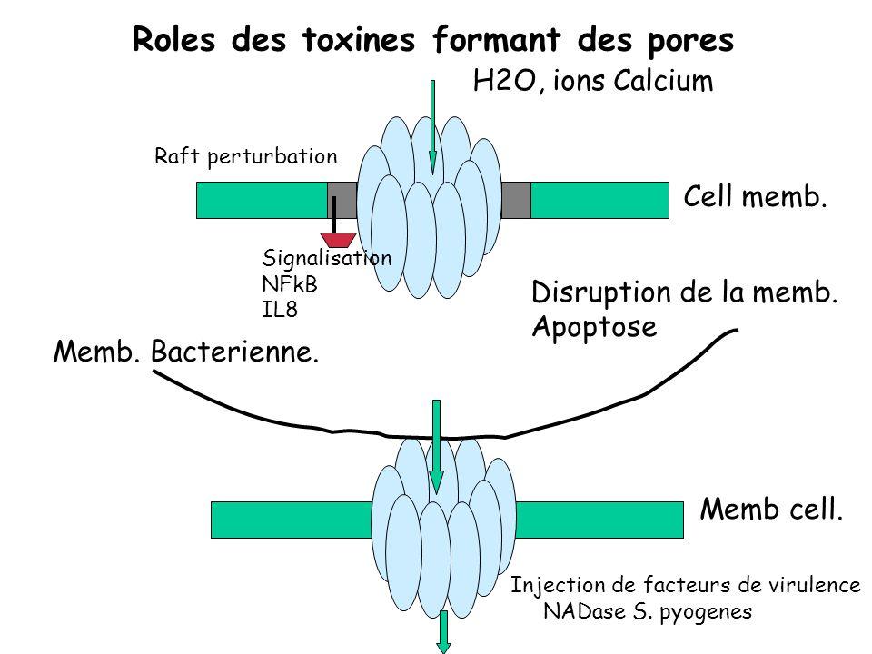 Roles des toxines formant des pores Cell memb. H2O, ions Calcium Disruption de la memb. Apoptose Memb cell. Memb. Bacterienne. Injection de facteurs d