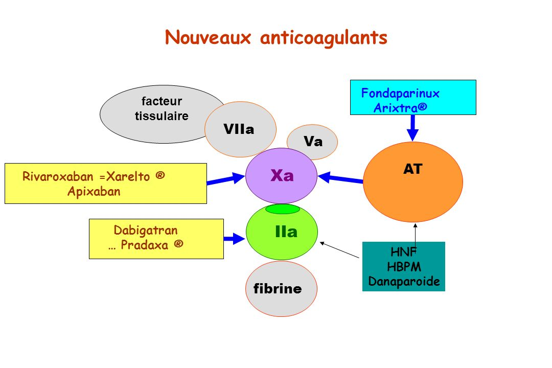 IIa fibrine facteur tissulaire VIIa Va Xa AT Fondaparinux Arixtra® Rivaroxaban =Xarelto ® Apixaban Nouveaux anticoagulants Dabigatran … Pradaxa ® HNF