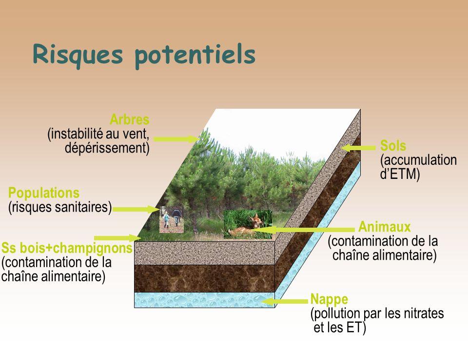 Risques potentiels Sols (accumulation dETM) Arbres (instabilité au vent, dépérissement) Nappe (pollution par les nitrates et les ET) Ss bois+champigno