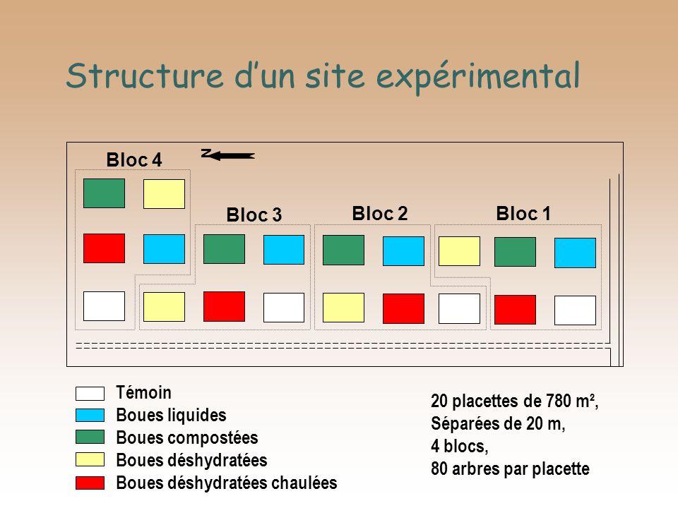 Structure dun site expérimental N Bloc 1 Bloc 2 Bloc 3 Bloc 4 Témoin Boues liquides Boues compostées Boues déshydratées Boues déshydratées chaulées 20