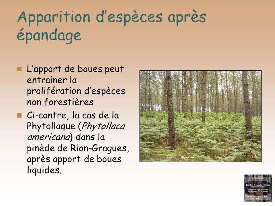 Apparition despèces après épandage Lapport de boues peut entrainer la prolifération despèces non forestières Ci-contre, la cas de la Phytollaque (Phyt